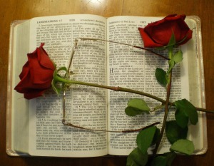 Bible-ScripturesRoses